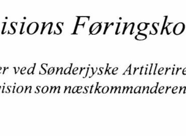 Danske Divisions Føringskoncept