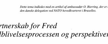 Partnerskab for Fred - tilblivelsesprocessen og perspektiv
