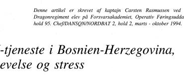 FN-tjeneste i Bosnien-Herzegovina, oplevelse og stress